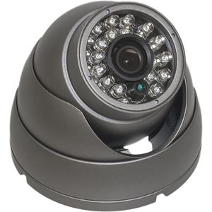 HD-SDI 1080p EYEBALL Infrared Dome Camera w/ ICR (XIB-2022)